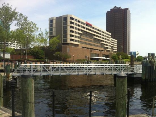 the sheraton from the harbour picture of sheraton norfolk rh tripadvisor com