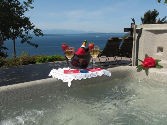 Eagle's View Bed and Breakfast, LLC: Enjoy the view from the Hot Tub