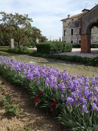 Giardino di Villa Emo 사진