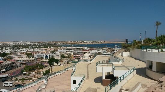 Sharm Sinai Tours