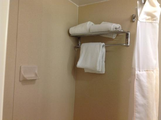 Hilton Garden Inn Montgomery East: Not sure if the towels were left over from the previous guests
