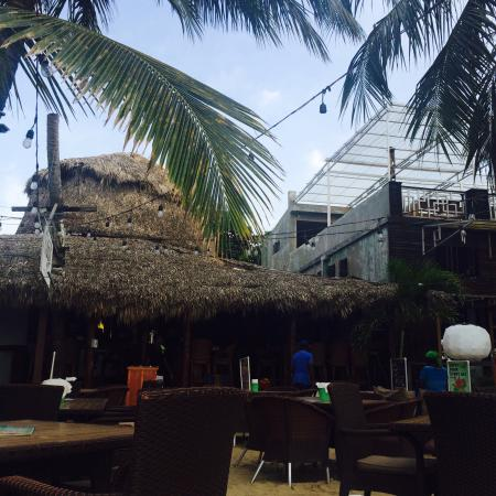 Lazy Dog Beach Bar and Grill Cabarete : Happy hour
