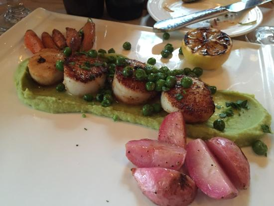 St. Michael's Alley: Scallop
