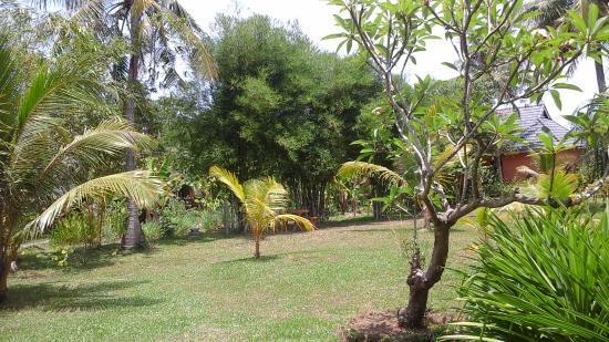 Mai Spa & Resort: Garden