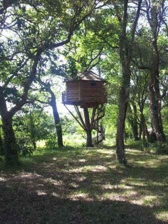 V nus picture of les cabanes du menoy leon tripadvisor - Les cabanes du trappeur ...