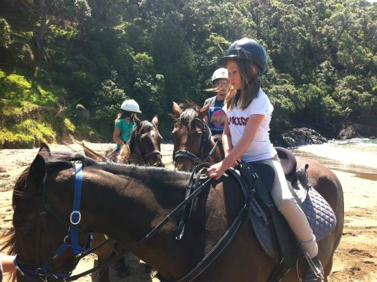 Whangarei, Nueva Zelanda: sandy bay horse trekking