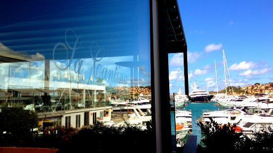 Sa Cantina Cafe: Vistas desde la terraza