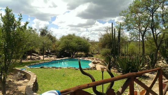 Eagle Rock Guest-Farm & Business Lodge: toller Pool