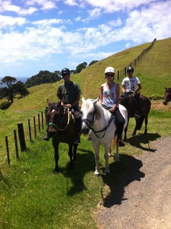 วานกาไร, นิวซีแลนด์: sandy bay horse trekking