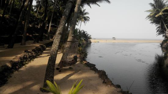 Dwarka Eco Beach Resort: View from the path beside the room leading to the beach and restaurant