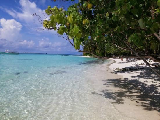 Kuramathi: Beach