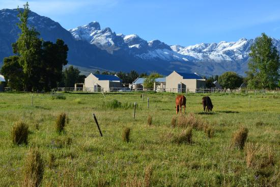 Saronsberg Vineyard Cottages: Wide open spaces