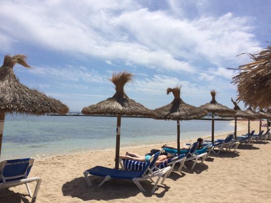 Puerto pollensa - Picture of Port de Pollenca Beach, Port de Pollenca - TripA...