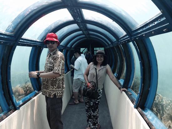 Putri Island Resort Hotel: Aquarium tunnel
