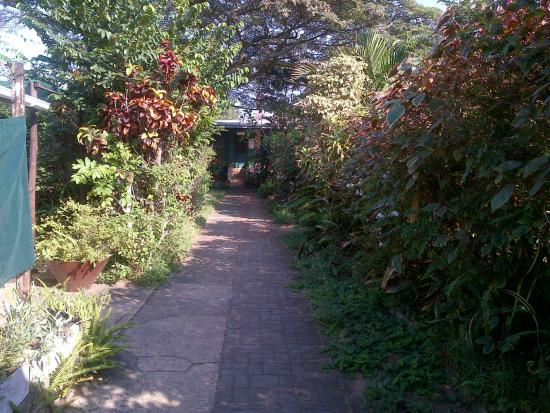 St. Lucia Wilds: Path from parking to reception past units