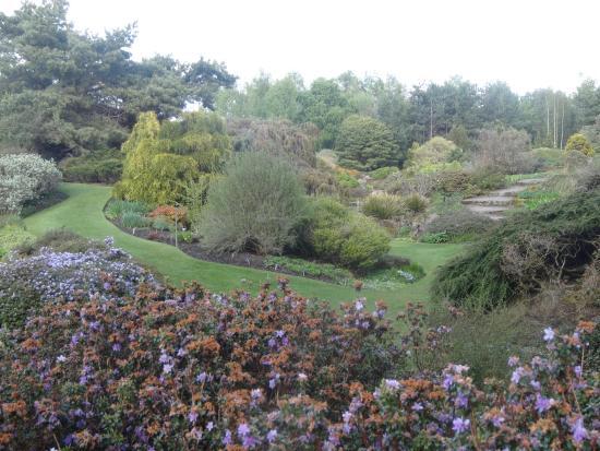Botanicka Zahrada 2 Picture Of Royal Botanic Garden Edinburgh Edinburgh Tripadvisor
