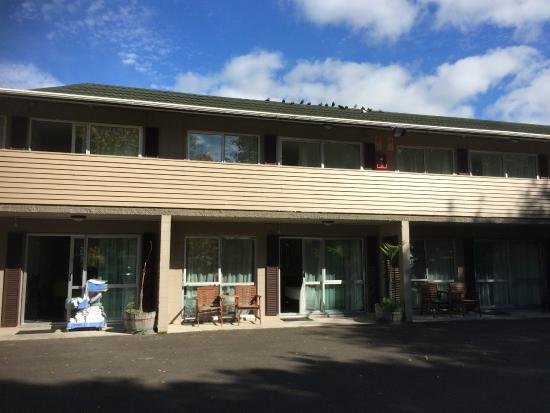 Waihi Motel: The motel.
