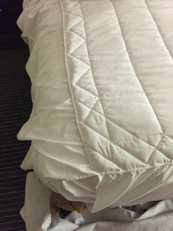 Homewood Suites Orlando-Maitland: Dust ruffle used as a comforter.