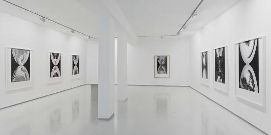 Noga Gallery of Contemporary Art