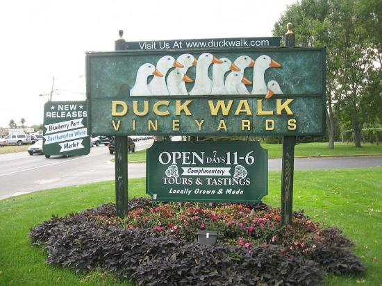 ‪Duck Walk Vineyards‬