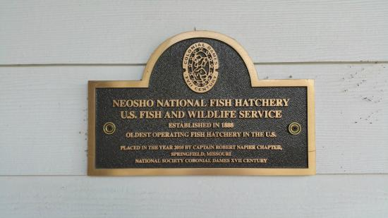 Neosho Federal Fish Hatchery : Founded in 1888 - Who would have known?