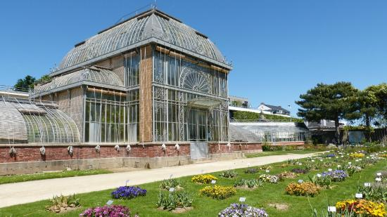 palmarium picture of jardin des plantes nantes tripadvisor. Black Bedroom Furniture Sets. Home Design Ideas