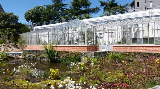 Serre tropicale d 39 exposition picture of jardin des plantes nantes tr - Serre de jardin 12m2 ...