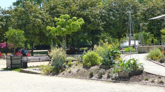 terrasse du café de l\'orangerie - Photo de Jardin des Plantes ...
