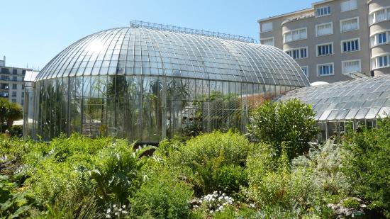 Jp5 picture of jardin des plantes nantes tripadvisor for Restaurant jardin des plantes nantes