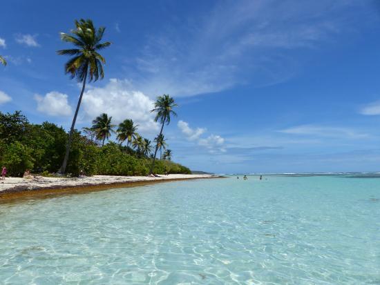 Mare e piscine picture of plage de bois jolan sainte anne tripadvisor - Plage de piscine en bois ...