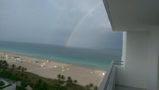 Loews Miami Beach Hotel: Beautiful double rainbow