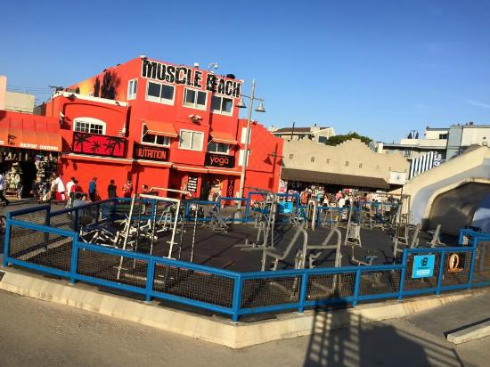 Venice Beach Open Gym Picture Of Los Angeles