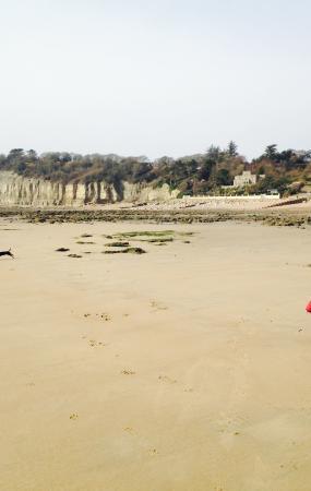 Pett Level Beach - tide out