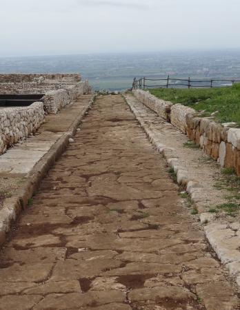 Antica Norba: romersk väg rakt ut i intet