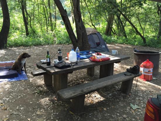 Big Sur Campground & Cabins Εικόνα