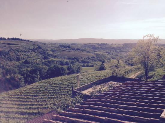 Podere Barberino in Chianti: looking out of the balcony