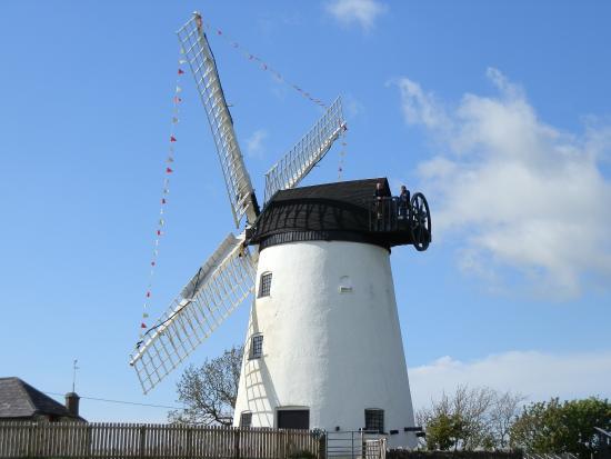 Llynnon Mill : The Mill