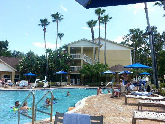 Our fave pool in front of the activities bldg picture of for Pool show orlando 2015