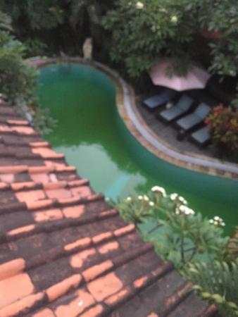 Secret Garden Inn Foto