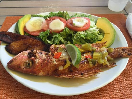 Enoch's Place: Red Snapper