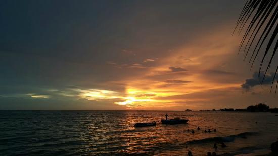 Enjoying sunset at Coconut Grove Restaurant