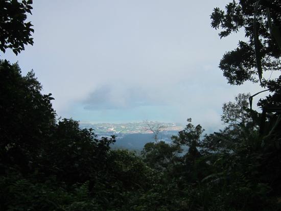 Gunung Mat Cincang: top