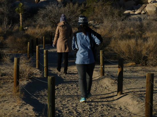 Desert Institute at Joshua Tree National Park: Caminhada pelo parque