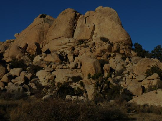 Desert Institute at Joshua Tree National Park: Pedras e mais Pedras