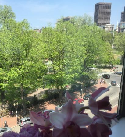 View of the Boston Garden from the window