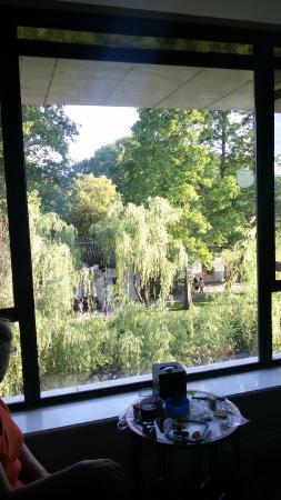 Dahua Hotel: room view