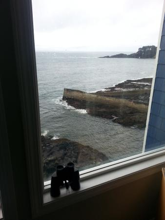 Depoe Bay, OR: Whale watching encouraged!