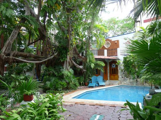 La piscine picture of eco hotel el rey del caribe for Piscine eco