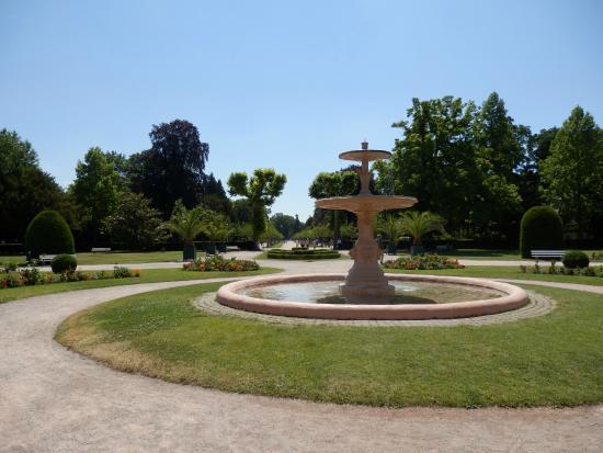 Flamant rose parc de l 39 orangerie picture of parc de l for Parc des expo strasbourg