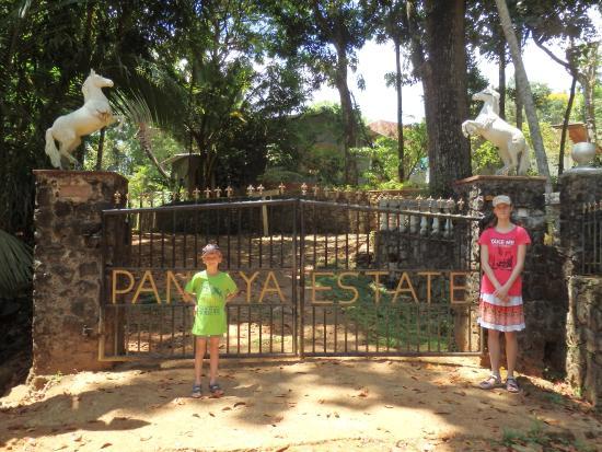 The Bungalow at Pantiya Estate: entrance